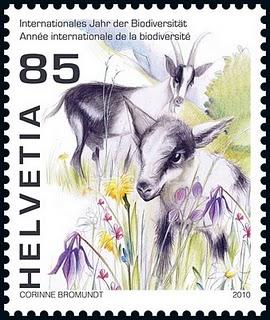 chevre_biodiversite_suisse_2010